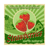 Vintage Poster For Strawberries Farm Poster by  radubalint