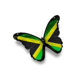 Jamaican Flag Butterfly, Isolated On White Prints by  suns_luck
