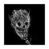 Skull Made Up Of Smoke, Black Background Print by  Pakmor