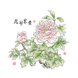 Ink Painting Of Chinese Peony Translation: The Blossom Of Prosperity Art by  yienkeat