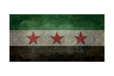 Syrian Interim Government And Syrian National Coalition'S National Flag Prints by Bruce stanfield