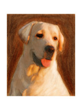 Oil Painting Portrait Of Young Yellow Labrador Art by  Yarvet