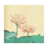 Lotus On The Old Grunge Paper Background Giclée-Premiumdruck von  kenny001