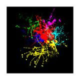Colorful Splashes Of Color On A Black Background Art by  yurij77