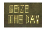"Earthy Background And Design Element Depicting The Words ""Seize The Day"" Prints by  nagib"