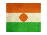 Grunge Sovereign State Flag Of Country Of Niger In Official Colors Kunst af Speedfighter