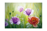 Poppies In The Morning, Oil Painting On Canvas Prints by  Valenty