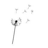 Abstract Dandelion Posters by  yganko