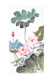 Abstract Lotus-Traditional Chinese Painting Prints by  aslysun