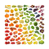 Collection Of Fruits And Vegetables Premium Giclee Print by  egal