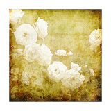 Art Grunge Floral Vintage Background Texture Art by Irina QQQ