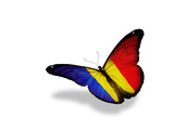 Romanian Flag Butterfly Flying, Isolated On White Background Prints by  suns_luck