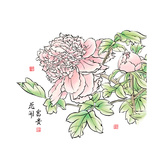 Ink Painting Of Chinese Peony. Translation: The Blossom Of Prosperity Posters by  yienkeat