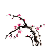 Chinese Painting Of Flowers, Plum Blossom, On White Background Plakater af elwynn