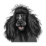 Black Smiling Dog - Poodle Posters by kavalenkava volha