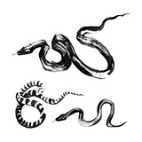 Snakes In The Style Of Traditional Chinese Ink Painting Poster by  jetFoto