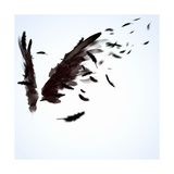 Abstract Image Of Black Wings Against Light Background Reproduction giclée Premium par Sergey Nivens