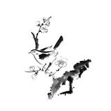 Chinese Painting , Plum Blossom And Bird, On White Background Poster von  elwynn