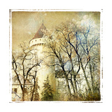 Fairy Winter Castle - Retro Styled Picture Art by  Maugli-l
