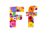Flower Alphabet Isolated On White - Letter F Posters by  tr3gi