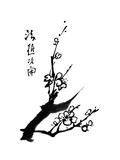 Chinese Painting Of Flowers, Plum Blossom, On White Background Posters by  elwynn