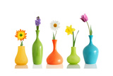 Spring Flowers In Vases Isolated On White Prints by  Acik