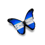 Honduras Flag Butterfly, Isolated On White Print by  suns_luck