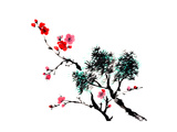 Chinese Painting Of Flowers, Plum Blossom, On White Background Prints by  elwynn