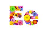 Flower Alphabet Isolated On White - Letter E Prints by  tr3gi