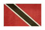 Grunge Sovereign State Flag Of Country Of Trinidad And Tobago In Official Colors Prints by  Speedfighter