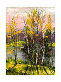 Trees And Bushes On The Bank Of The River Prints by  balaikin2009