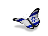 Israeli Flag Butterfly Flying, Isolated On White Background Prints by  suns_luck
