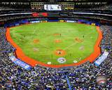 Toronto Blue Jays Photo Photo
