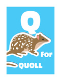 Q For The Quoll, An Animal Alphabet For The Kids Poster by Elizabeta Lexa