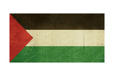 Grunge Sovereign State Flag Of Country Of Palestne In Official Colors Posters by  Speedfighter