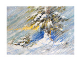 Fir-Tree In Snow. A Picture Drawn By Oil Print by  balaikin2009