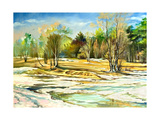 Spring Landscape With Trees And A Snow Print by  balaikin2009