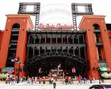 St Louis Cardinals Photo Photo