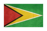 Grunge Sovereign State Flag Of Country Of Guyana In Official Colors Print by  Speedfighter