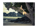 Beautiful Fashionable Mermaid Sitting On A Mighty Tree On The Beach Prints by George Mayer