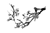 Chinese Black And White Traditional Ink Painting, Plum Blossom On White Background Prints by  elwynn