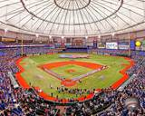 Tampa Bay Rays Photo Photo