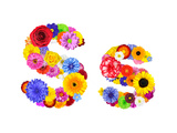 Flower Alphabet Isolated On White - Letter S Art by  tr3gi