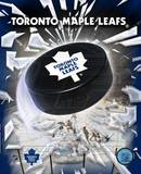 Toronto Maple leafs Photo Photo