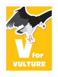 V For The Vulture, An Animal Alphabet For The Kids Prints by Elizabeta Lexa