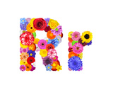 Flower Alphabet Isolated On White - Letter R Posters by  tr3gi