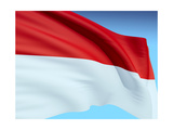 Flag Of Indonesia And Monaco Posters by  bioraven
