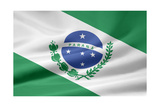 Flag Of Parana Brasil Posters by  joggi2002
