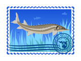 Postage Stamp. Sturgeon Prints by  GUARDING-OWO