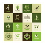 Set Of Icons For Organic Food Poster by  varijanta